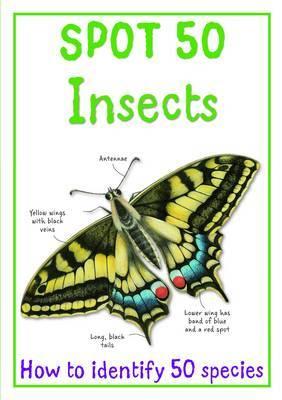 Spot 50 - Insects by Camilla de la Bedoyere