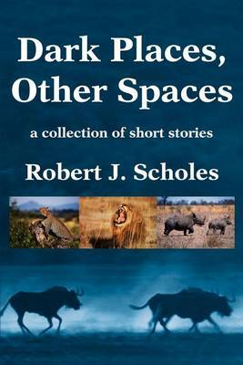 Dark Places, Other Spaces by Robert J. Scholes image
