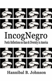 Incognegro by Hannibal B Johnson image