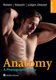 Anatomy by Johannes W Rohen