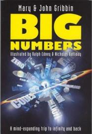 Big Numbers by Mary Gribbin image
