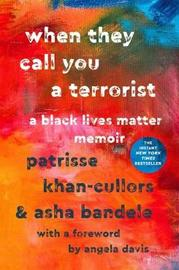 When They Call You a Terrorist by Asha Bandele image
