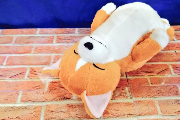 Zoo Zoo Zoo Sleeping Animal Big Plush -Shiba Inu -