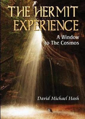 The Hermit Experience by David Hash image