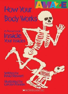 How Your Body Works: A Good Look Inside You Insides by David Stewart image