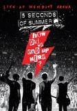 5 Seconds Of Summer - How Did We End Up Here? Live At Wembley Arena DVD