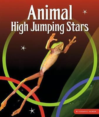 Animal High Jumping Stars by Susan E Hamen image