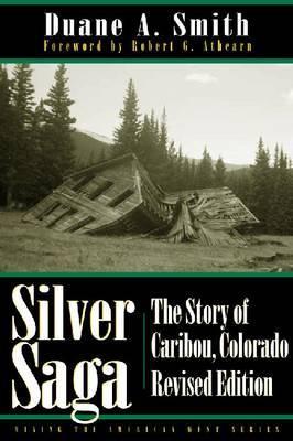 Silver Saga by Duane A Smith image