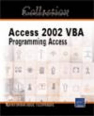 VBA Access 2002 IT Resources by Michele Amelot image