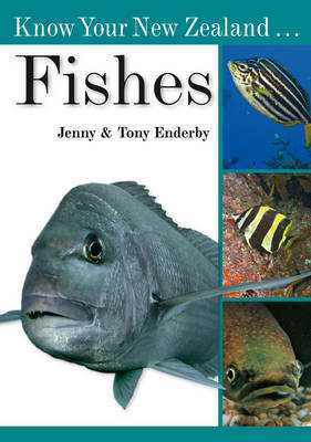 Know Your New Zealand Fishes by Tony Enderby