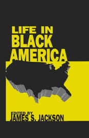 Life in Black America image