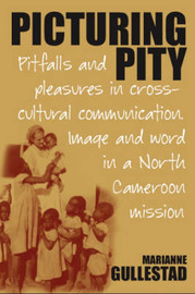 Picturing Pity by Marianne Gullestad image