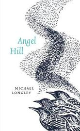 Angel Hill by Michael Longley image
