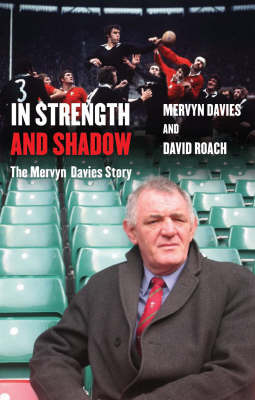 In Strength And Shadow by David Roach image