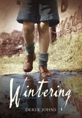 Wintering by Derek Johns image