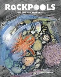 Rock Pools by Ned Barraud