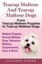 Teacup Maltese And Teacup Maltese Dogs by Susanne Saben