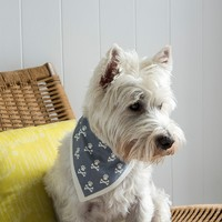 Rex: Grey Paw - Large Dog Bandana