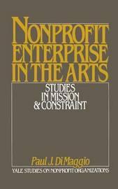 Non-Profit Enterprise in the Arts image