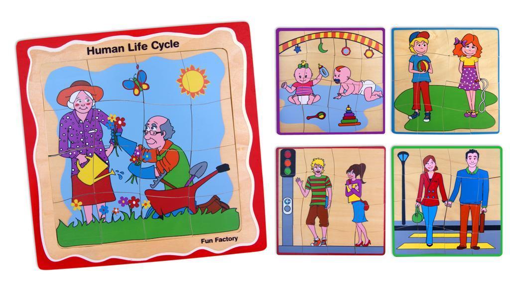 Fun Factory: Human Life Cycle Layer Puzzle image