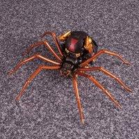 Beast Wars: Masterpiece - MP-46 Blackarachnia image