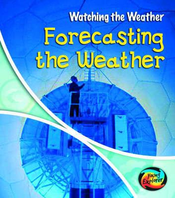 Forecasting the Weather Hardback by Elizabeth Miles
