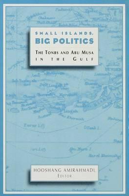 Small Islands, Big Politics image
