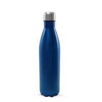 Insulated Stainless Steel Bottle 750ml Gloss Blue