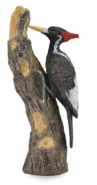 CollectA - Ivory-Billed Woodpecker image