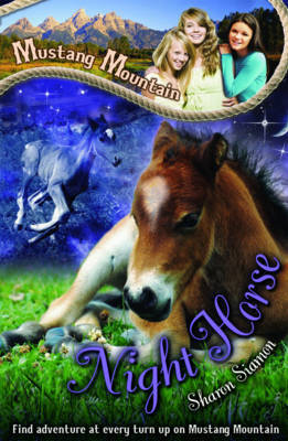 Night Horse by Sharon Siamon image