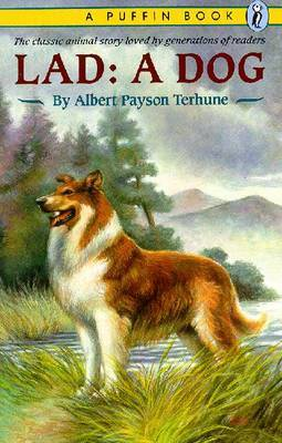 Lad a Dog by Albert Payson Terhune image