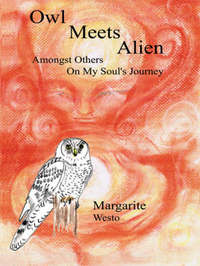 Owl Meets Alien by Margarite Westo