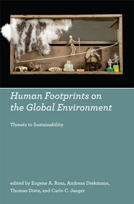 Human Footprints on the Global Environment: Threats to Sustainability image