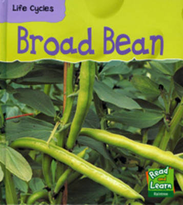 Broad Bean by Louise Spilsbury image