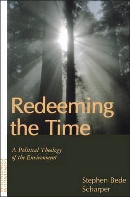 Redeeming the Time by Stephen B. Scharper image