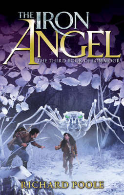 The Iron Angel by Richard Poole
