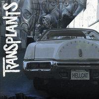 Transplants by Transplants image