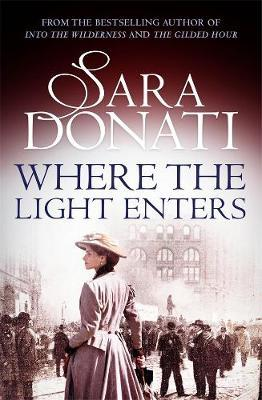 Where the Light Enters by Sara Donati image