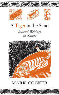 A Tiger in the Sand by Mark Cocker