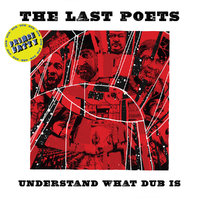 Understand What Dub Is by The Last Poets