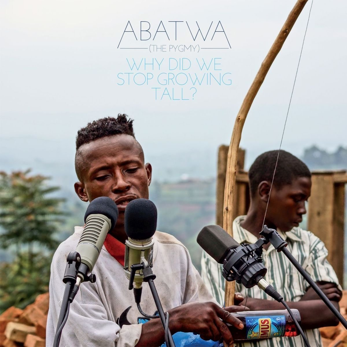 Abatwa (The Pygmy): Why Did We Stop Growing Tall? by Various Artists image