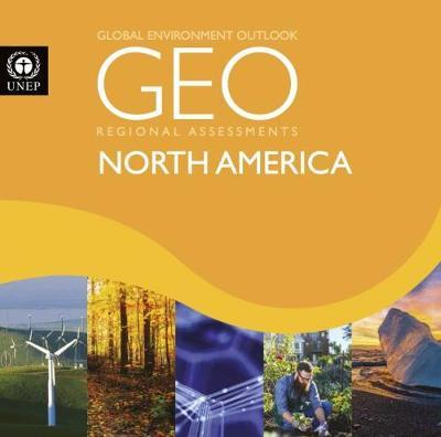 Global environment outlook 6 (GEO-6)