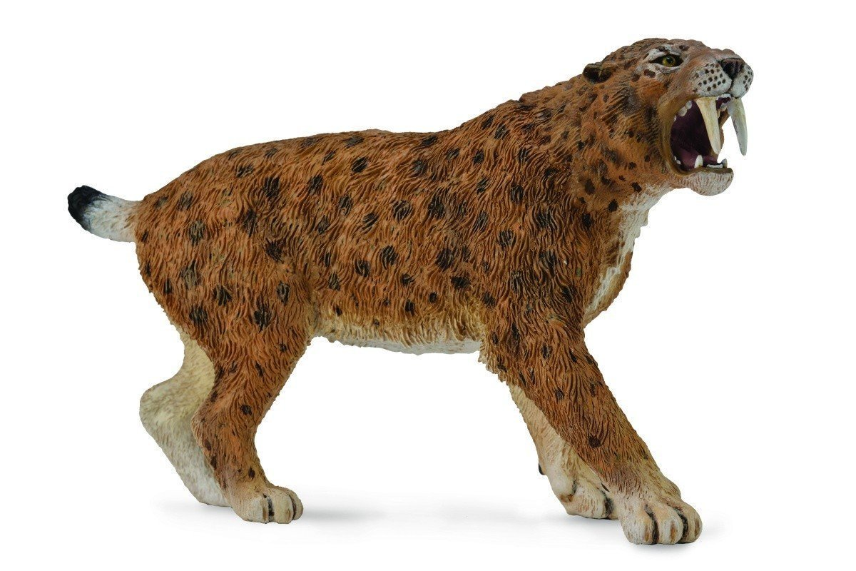 CollectA - Smilodon image