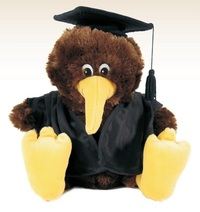 Antics: Graduation Kiwi - Novelty Plush