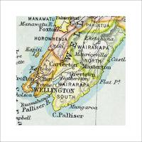Wellington Vintage Map Print - Framed