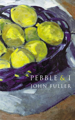 Pebble & I by John Fuller image