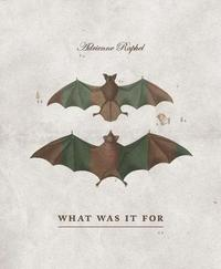 What Was It for by Adrienne Raphel image
