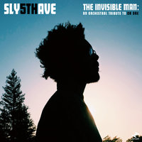 The Invisible Man: An Orchestral Tribute To Dr. Dre (2LP) by Sly5thAve