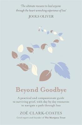Beyond Goodbye by Zoe Clark-Coates