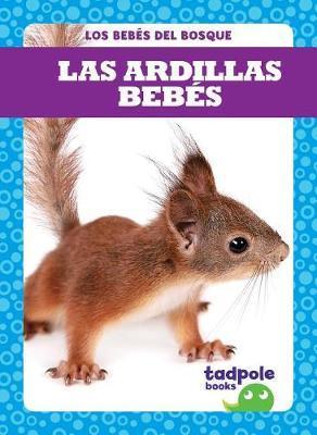 Las Ardillas Bebes (Squirrel Kits) by Genevieve Nilsen image